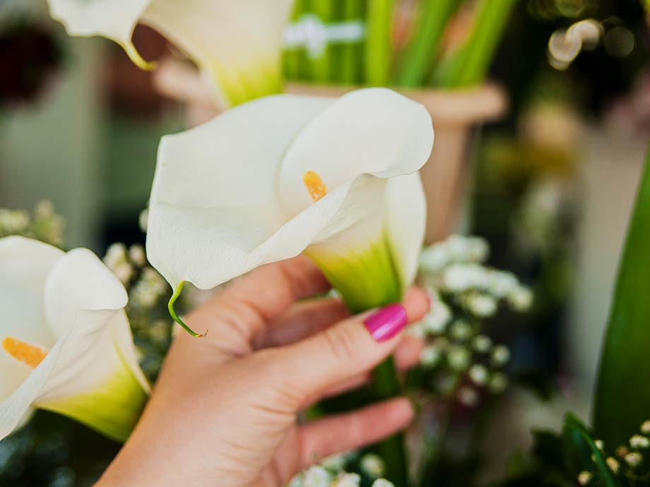 Calle fiori più belli matrimonio