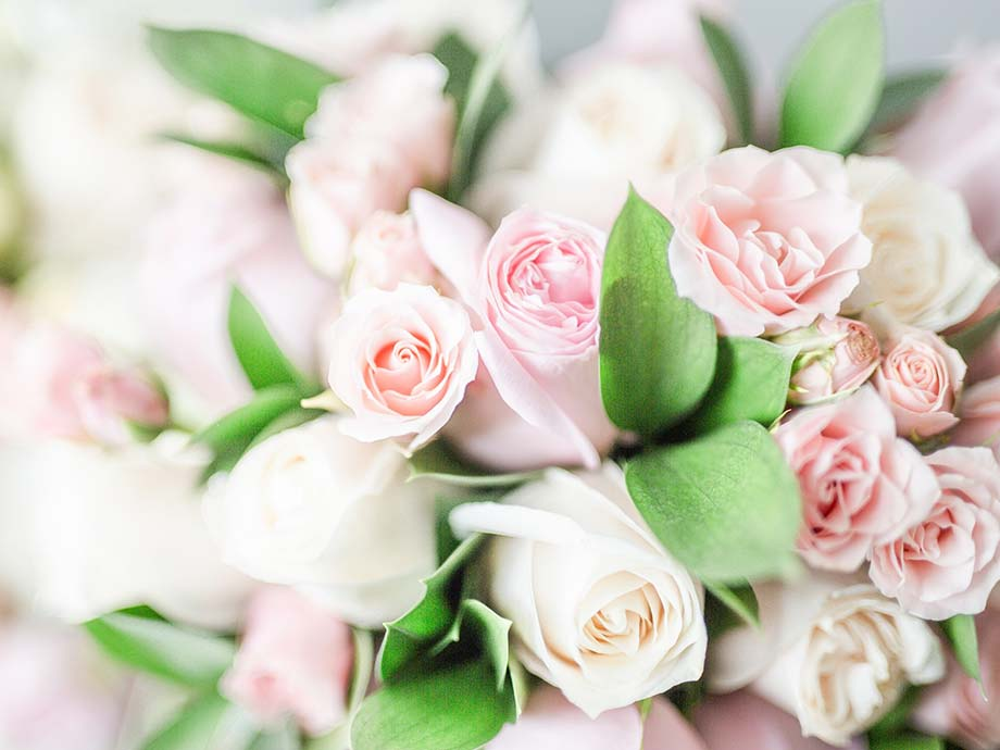 Le rose fiori più belli matrimonio